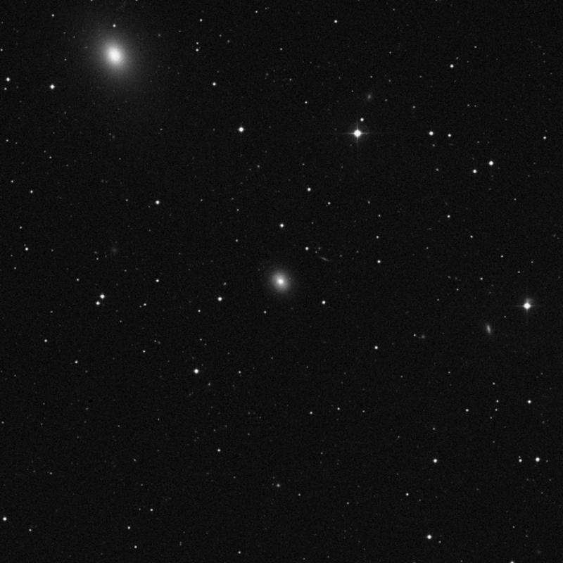 Image of NGC 3658 - Lenticular Galaxy in Ursa Major star