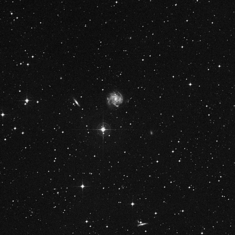 Image of IC 974 - Star in Virgo star