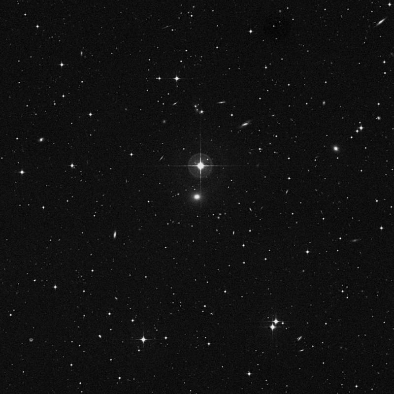 Image of NGC 3679 - Elliptical Galaxy in Leo star