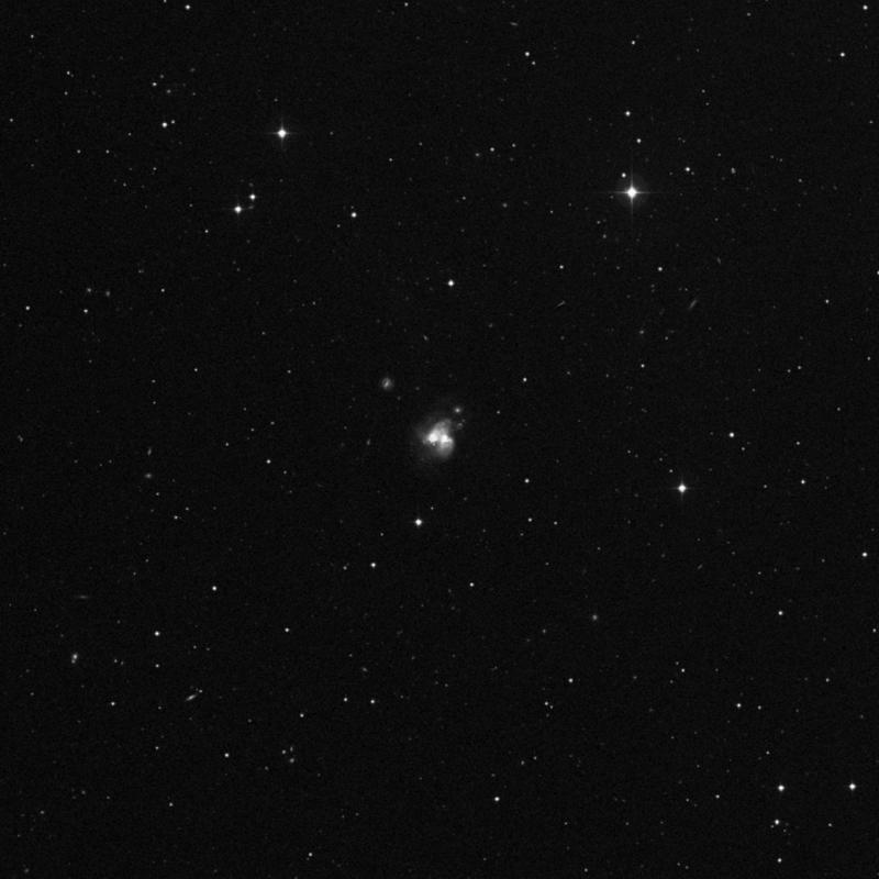 Image of NGC 3690 - Galaxy Pair in Ursa Major star