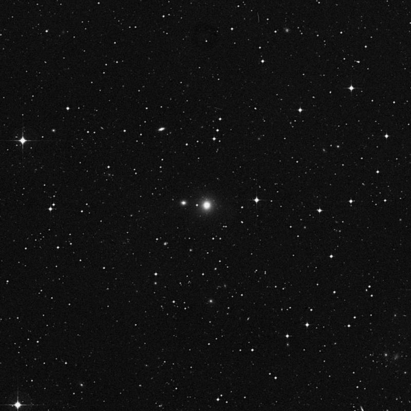 Image of NGC 3704 - Elliptical Galaxy in Crater star