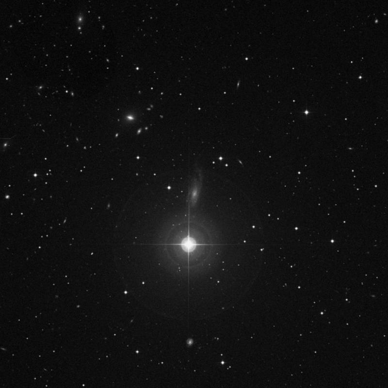 Image of NGC 3733 - Intermediate Spiral Galaxy in Ursa Major star