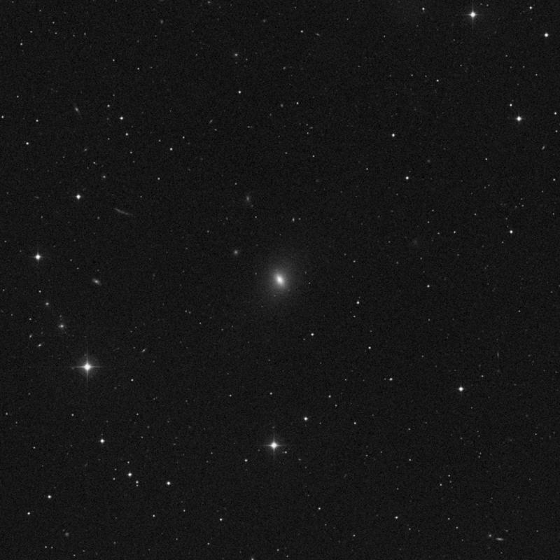 Image of NGC 3872 - Elliptical Galaxy in Leo star