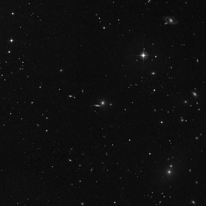 Image of NGC 3873 - Elliptical Galaxy in Leo star