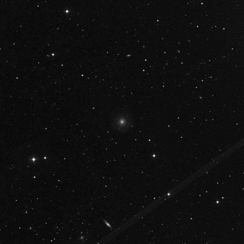 Image of NGC 3913 - Spiral Galaxy in Ursa Major star