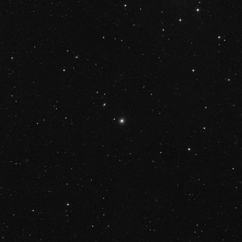 Image of NGC 3919 - Elliptical Galaxy in Leo star