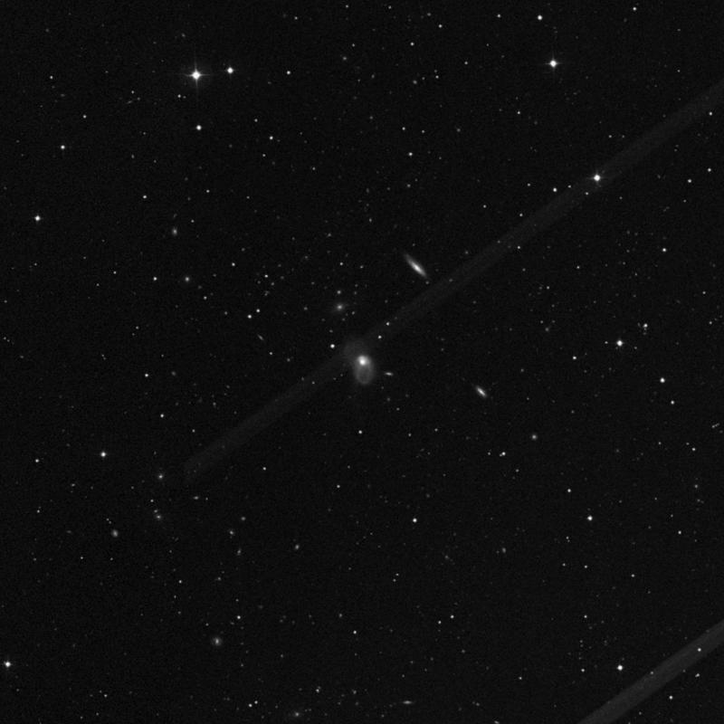 Image of NGC 3921 - Lenticular Galaxy in Ursa Major star