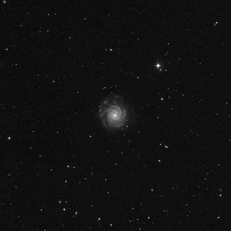Image of NGC 3938 - Spiral Galaxy in Ursa Major star
