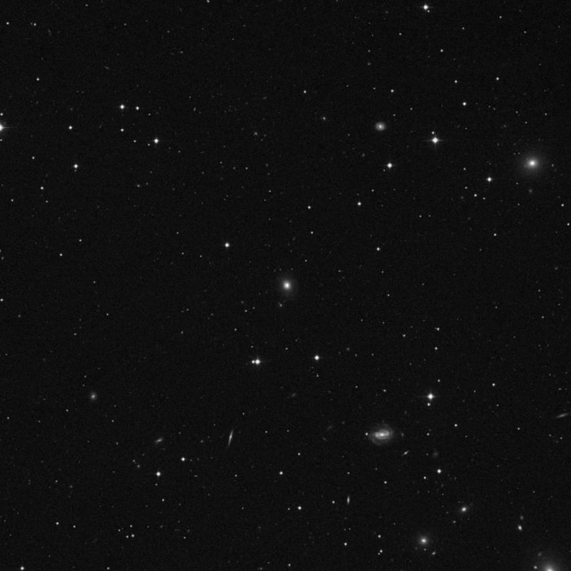 Image of NGC 3954 - Elliptical Galaxy in Leo star