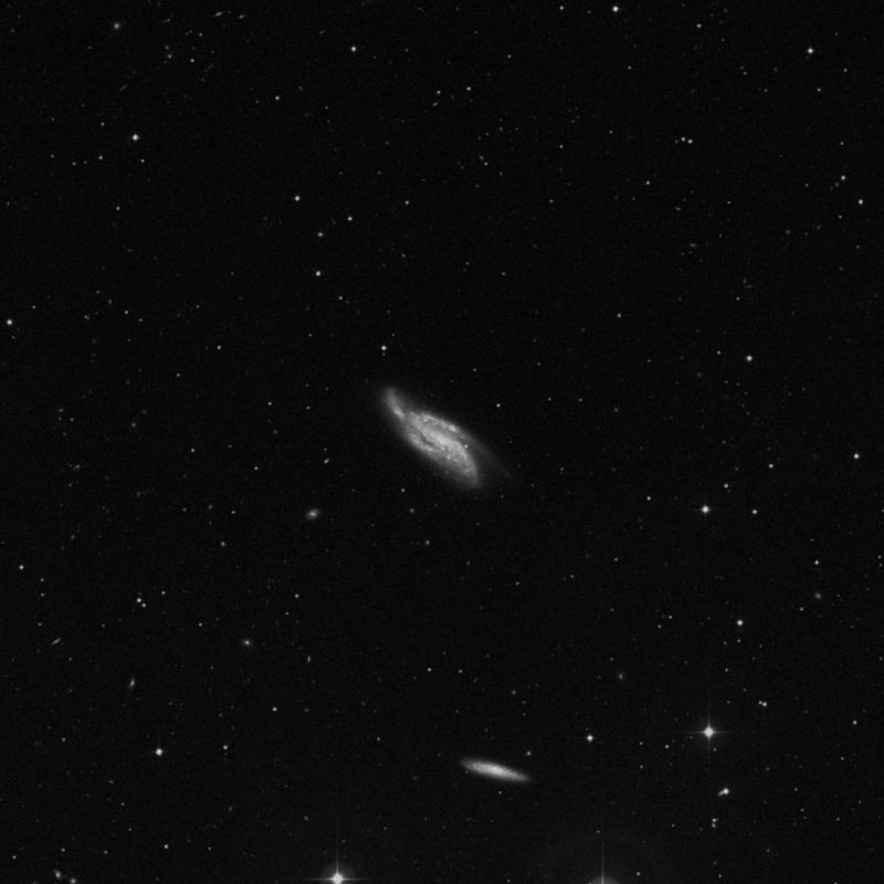 Image of NGC 4088 - Intermediate Spiral Galaxy in Ursa Major star