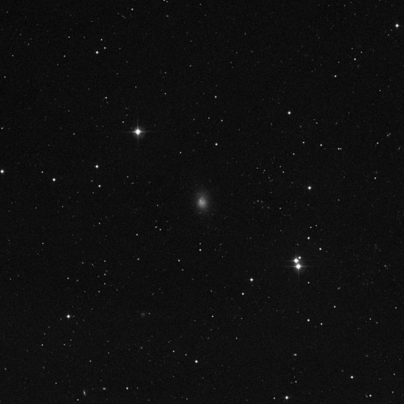 Image of NGC 4163 - Irregular Galaxy in Canes Venatici star