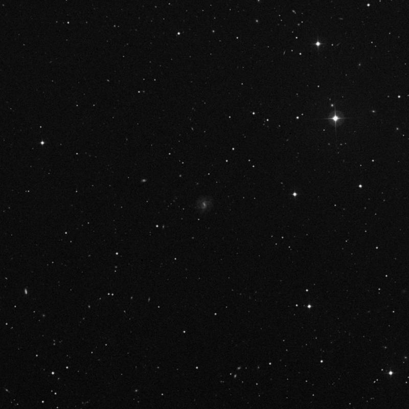 Image of NGC 4195 - Spiral Galaxy in Ursa Major star