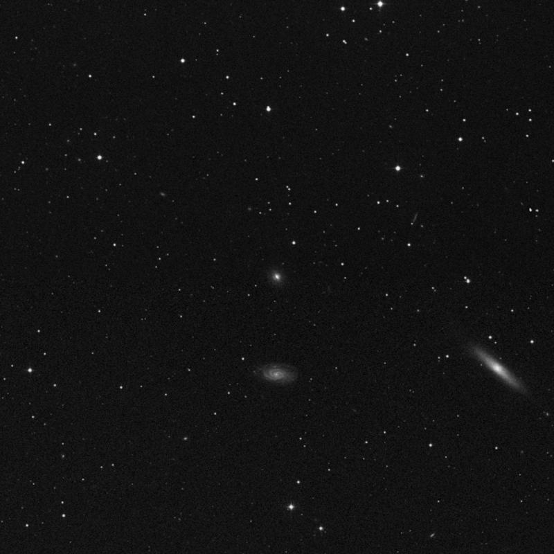Image of NGC 4247 - Intermediate Spiral Galaxy star