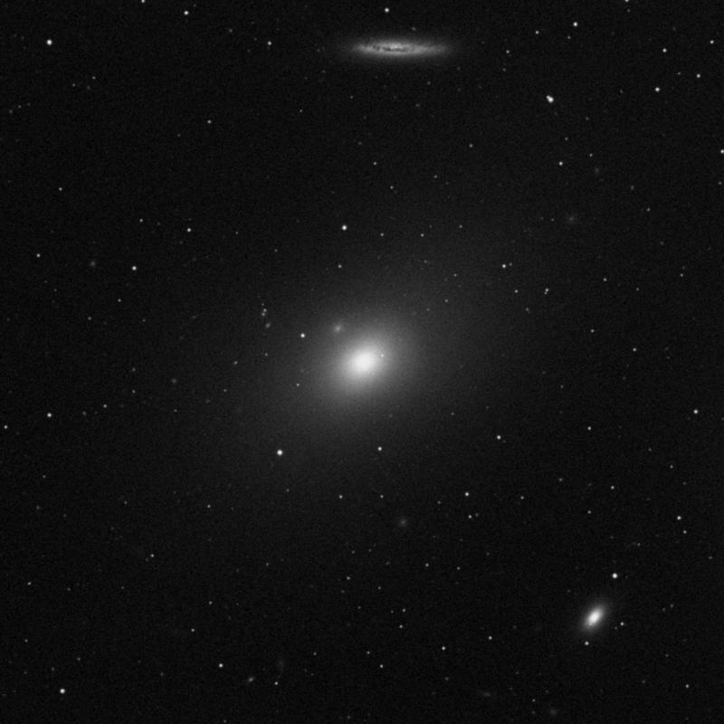 Image of Messier 86 - Elliptical Galaxy star