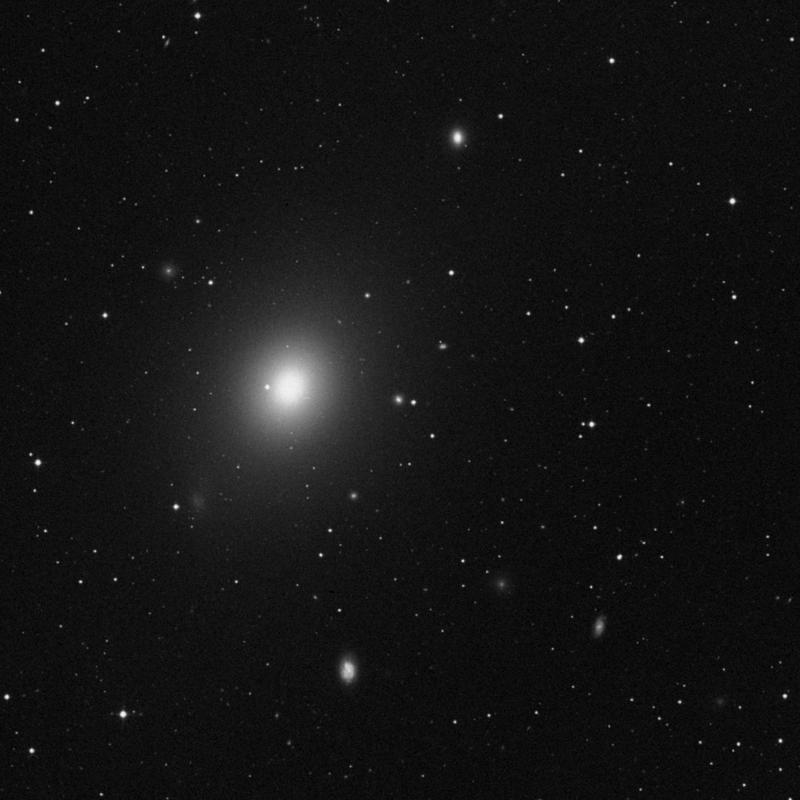 Image of NGC 4467 - Elliptical Galaxy star