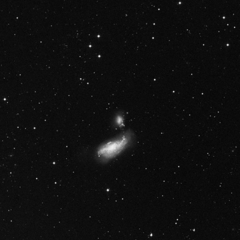Image of NGC 4485 - Irregular Galaxy in Canes Venatici star