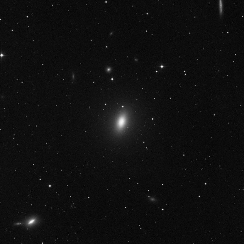 Image of Messier 59 - Elliptical Galaxy star