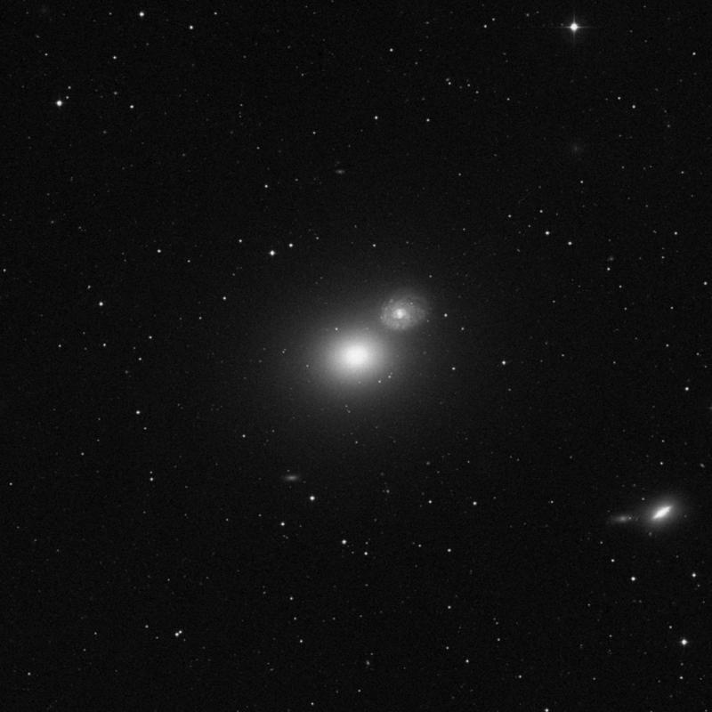 Image of Messier 60 - Elliptical Galaxy star