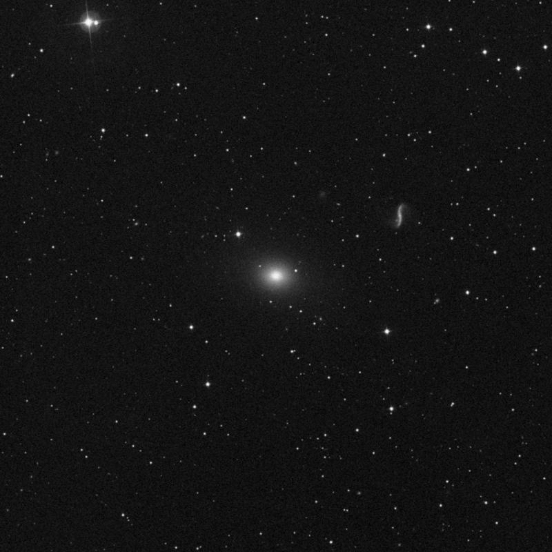Image of NGC 4589 - Elliptical Galaxy star