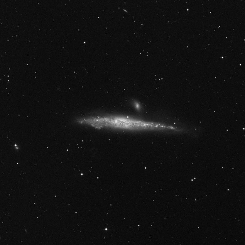 Image of NGC 4631 (Whale Galaxy) - Barred Spiral Galaxy in Canes Venatici star
