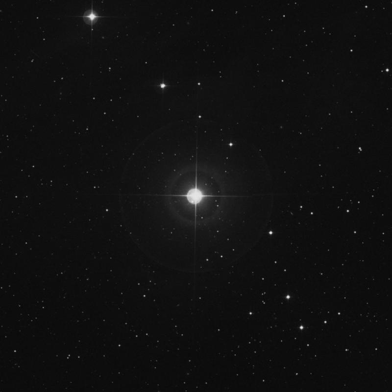 Image of τ2 Arietis (tau2 Arietis) star