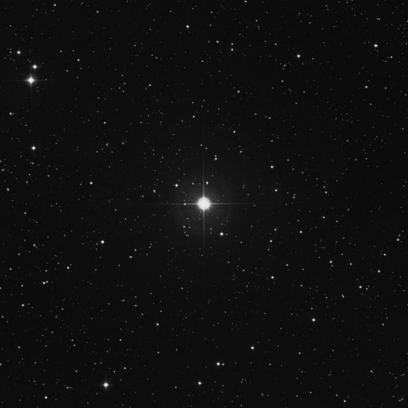 Image of 40 Persei star