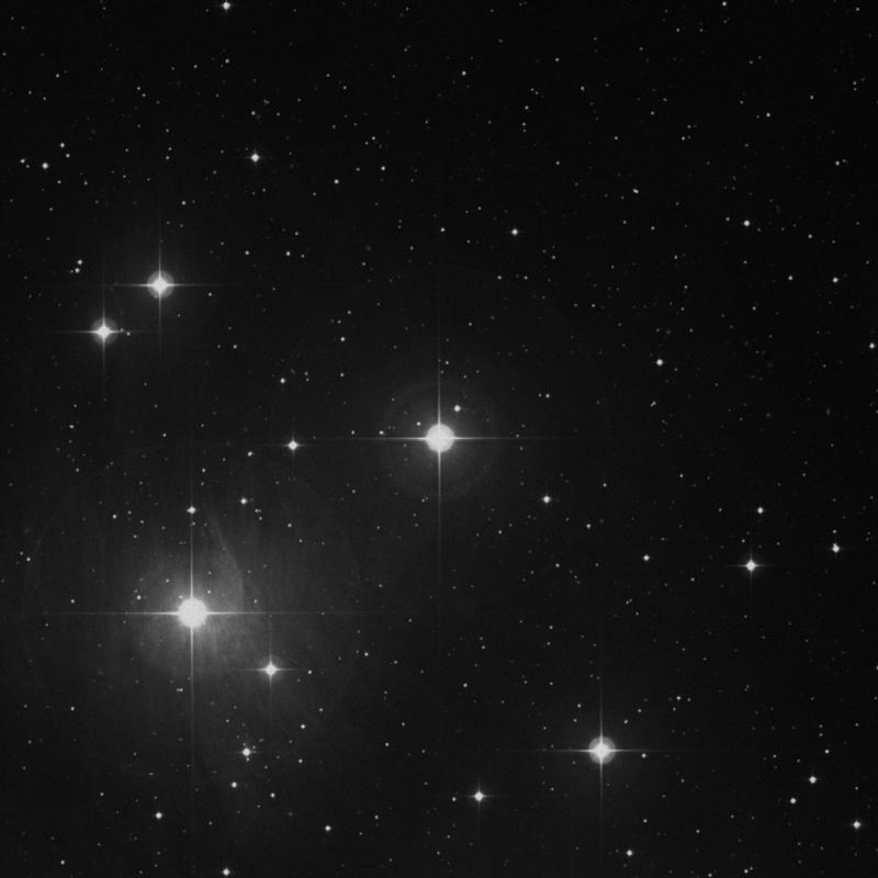 Image of Taygeta - 19 Tauri star