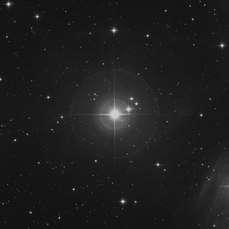 Image of Alcyone - η Tauri (eta Tauri) star