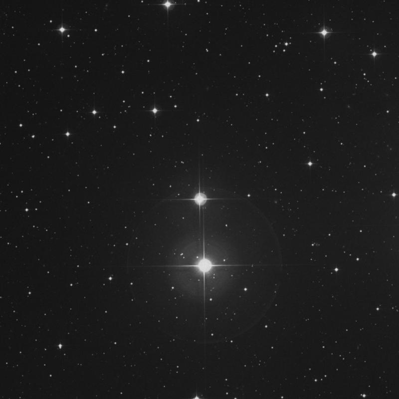 Image of Pleione - 28 Tauri star