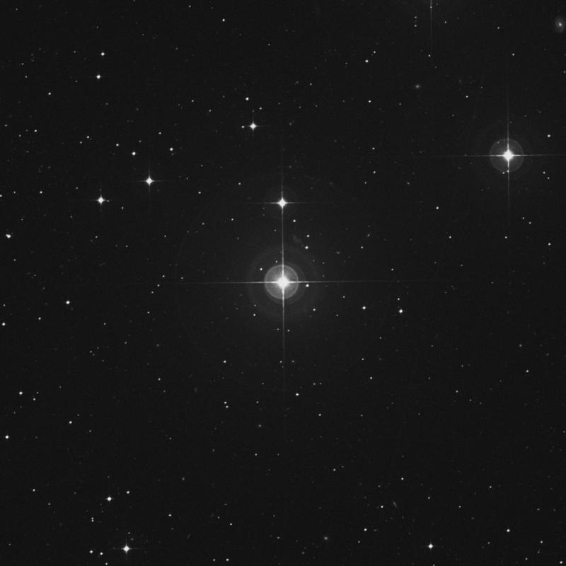 Image of ρ Fornacis (rho Fornacis) star