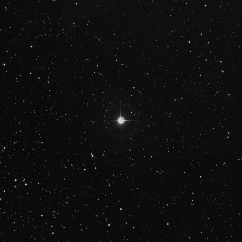 Image of 49 Persei star