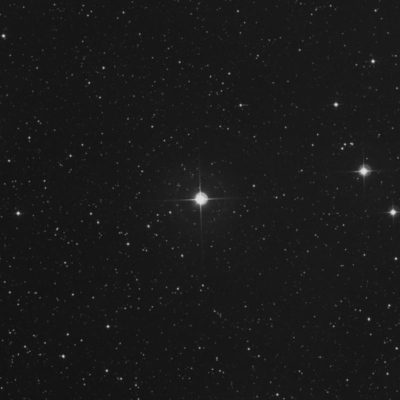 Image of 50 Persei star