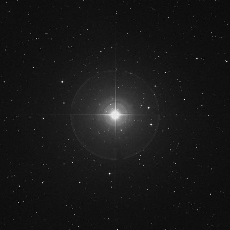 Image of Prima Hyadum - γ Tauri (gamma Tauri) star