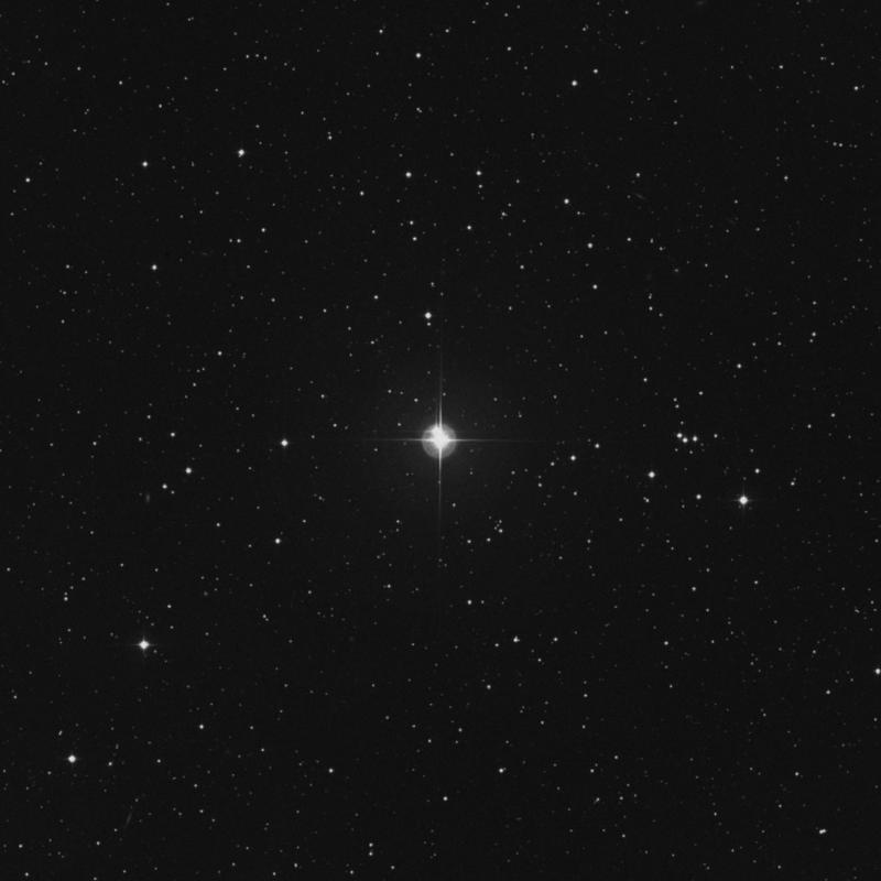 Image of χ Tauri (chi Tauri) star