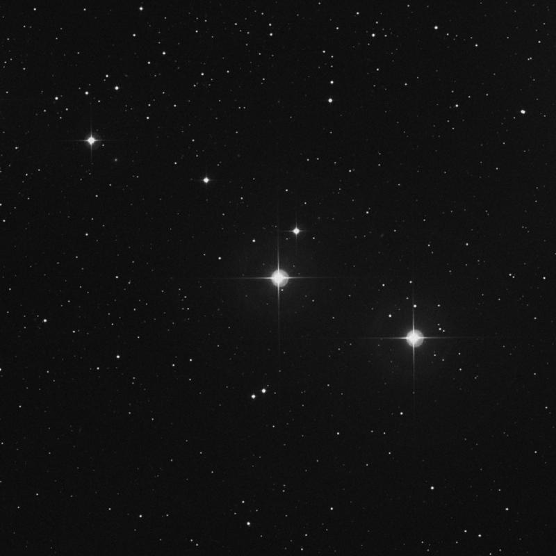 Image of 81 Tauri star