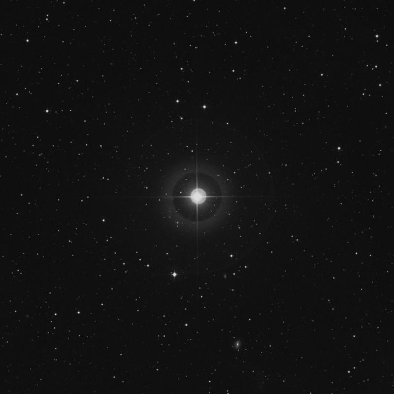 Image of π2 Orionis (pi2 Orionis) star