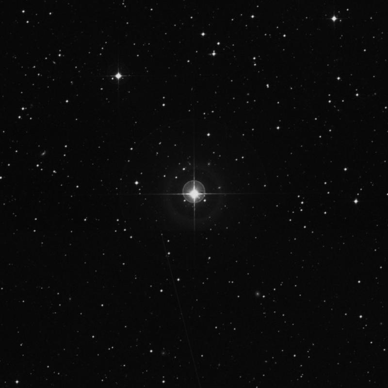 Image of HR1699 star