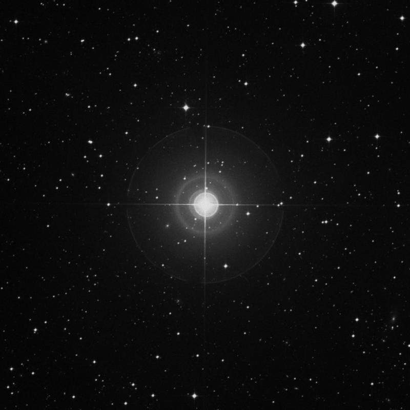 Image of ο Columbae (omicron Columbae) star