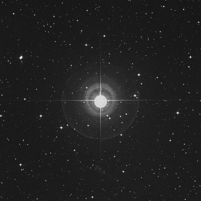 Image of 29 Orionis star