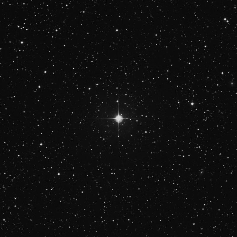 Image of 117 Tauri star