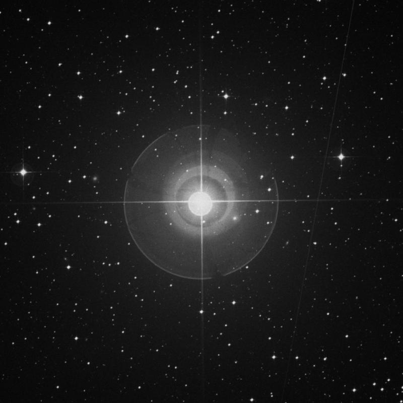 Image of Arneb - α Leporis (alpha Leporis) star