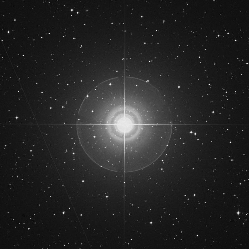 Image of Phact - α Columbae (alpha Columbae) star