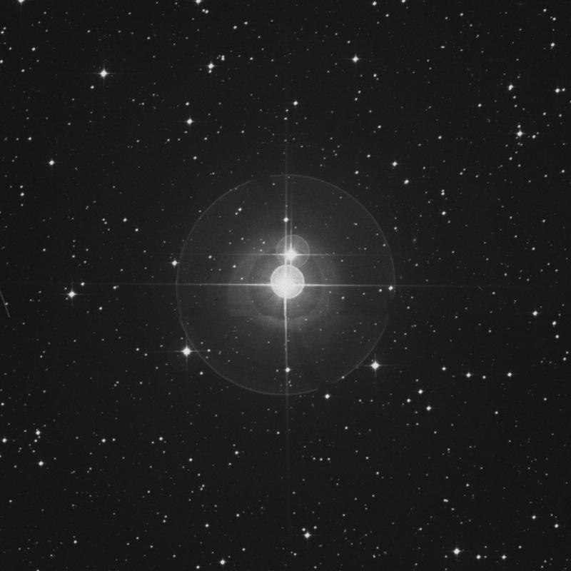 Image of γ Leporis (gamma Leporis) star