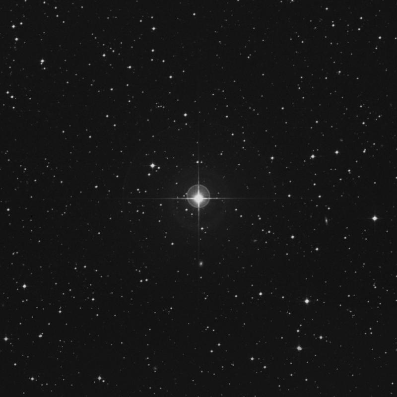 Image of μ Columbae (mu Columbae) star