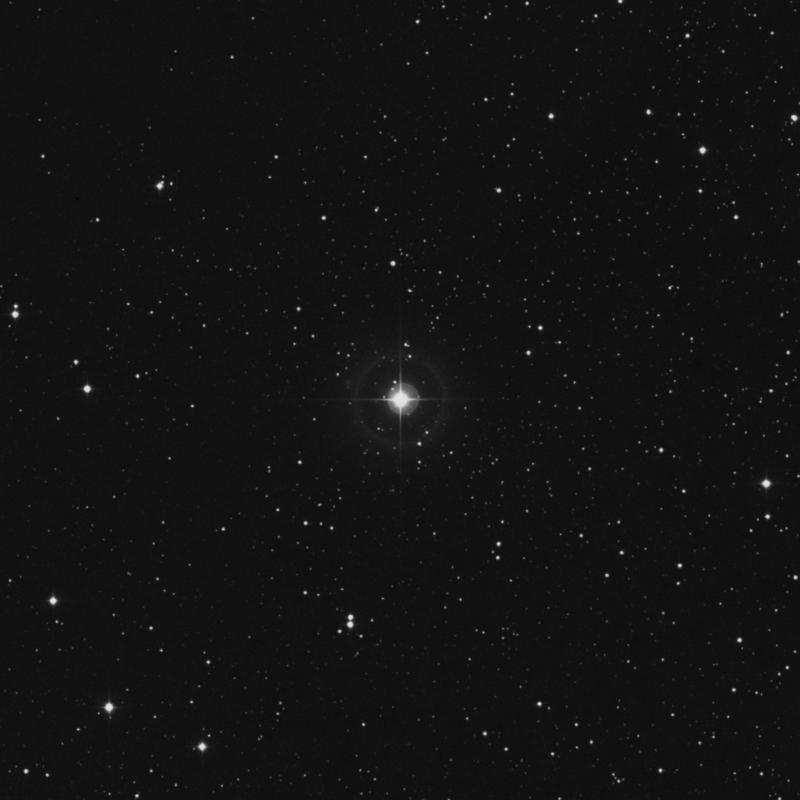 Image of HR2019 star