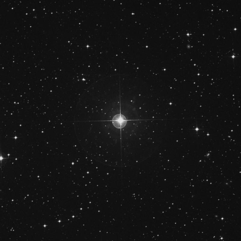Image of λ Columbae (lambda Columbae) star