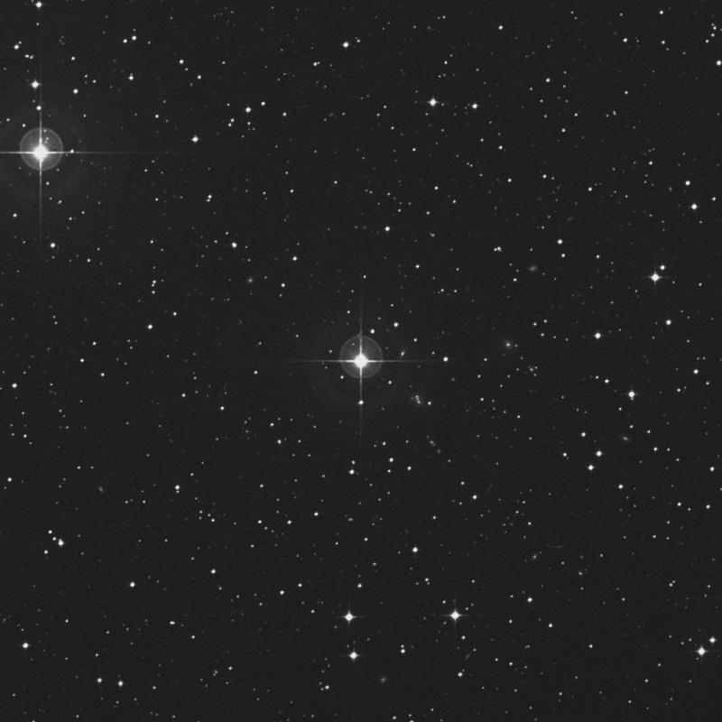Image of π1 Columbae (pi1 Columbae) star