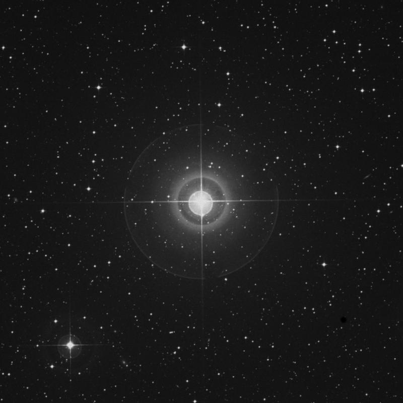 Image of δ Columbae (delta Columbae) star