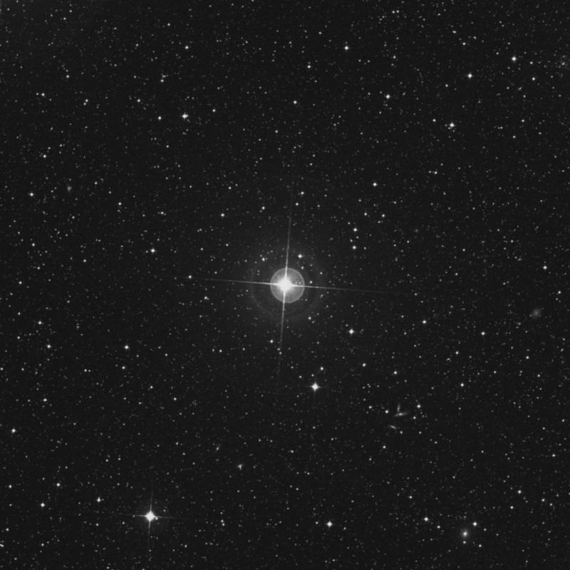 Image of π1 Doradus (pi1 Doradus) star
