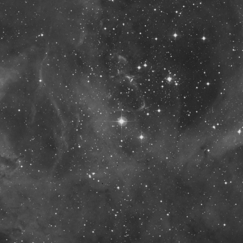 Image of 12 Monocerotis star